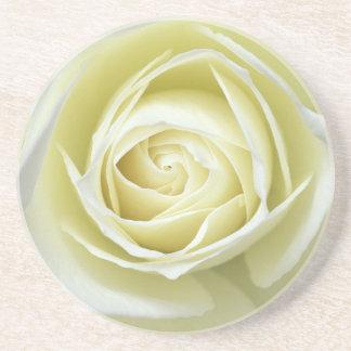 Close up details of white rose beverage coaster