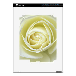 Close up details of white rose iPad 3 decals