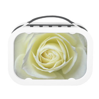 Close up details of white rose lunch box