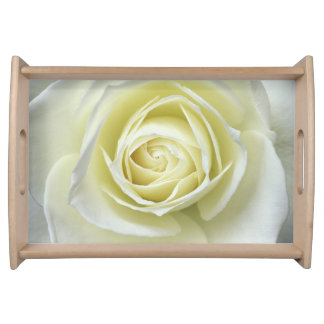 Close up details of white rose service trays