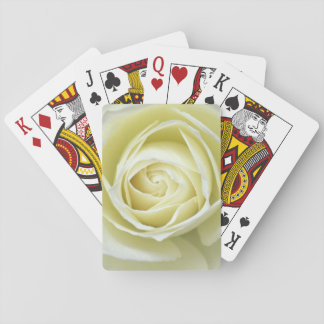 Close up details of white rose playing cards