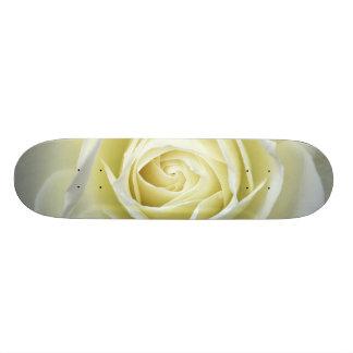 Close up details of white rose skateboard deck