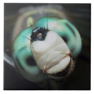 Close-up Dragonfly Head Iridescent Compound Eyes Ceramic Tile