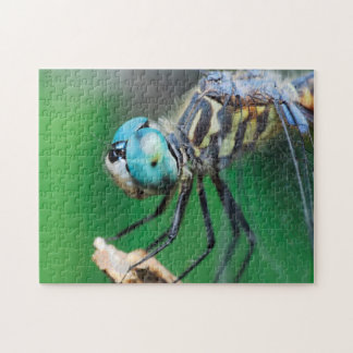 Close-up Dragonfly Iridescent Compound Eyes Jigsaw Puzzle