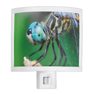 Close-up Dragonfly Iridescent Compound Eyes Night Light