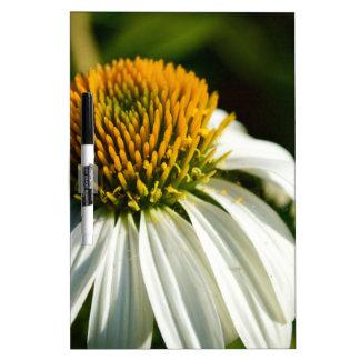 Close-up Flower Dry-Erase Board