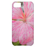 Close Up Flower of Begonia Cover For iPhone 5C