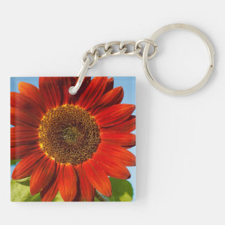 Close-up Flowers in the Sun. Keychain