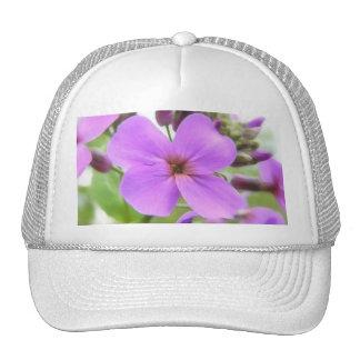 Close Up - Fragrant Dame's Rocket Trucker Hat