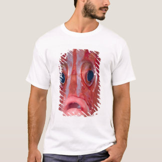 Close-up frontal view of colorful squirrelfish T-Shirt