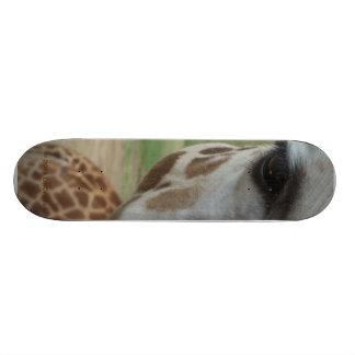 Close-Up Giraffe Skateboard