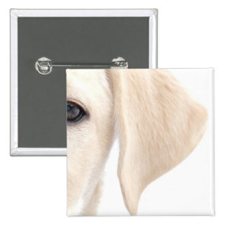 Close-up Half Face of Yellow Labrador 2 Inch Square Button