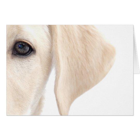 Close-up Half Face of Yellow Labrador Card