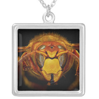 Close Up Head of the European Hornet Vespa Crabro Silver Plated Necklace