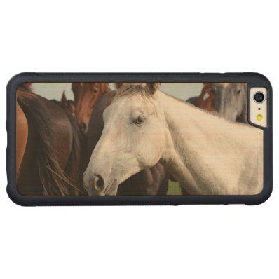 Close-up herd of horses. carved® maple iPhone 6 plus bumper