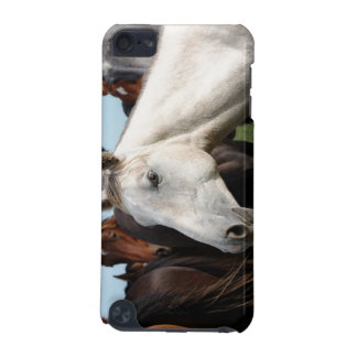 Close-up herd of horses. iPod touch 5G cases