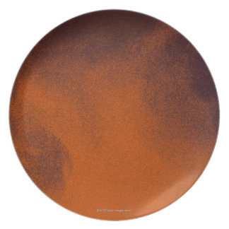 Close up image of amber colored beer with frothy melamine plate