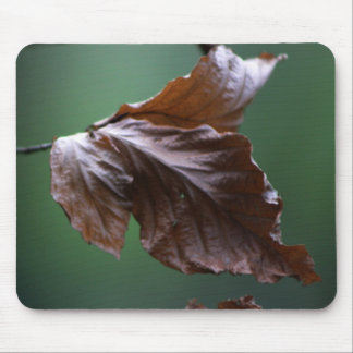 Close-up Leaf Mousepad Nature Lover