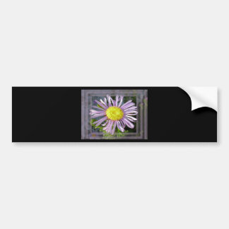 Close Up Lilac Aster With Bright Yellow Centre Bumper Sticker
