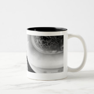 Close up look at cell division Two-Tone coffee mug