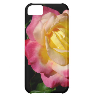Close Up Magenta and Yellow Rose Case