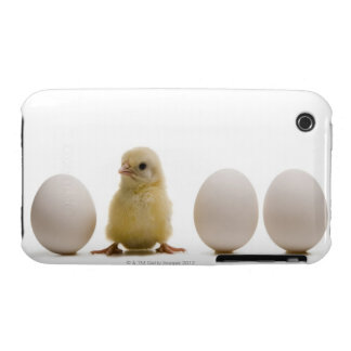 Close-up of a baby chick with three eggs iPhone 3 Case-Mate cases