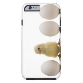 Close-up of a baby chick with three eggs tough iPhone 6 case