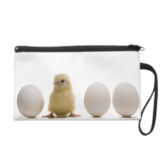 Close-up of a baby chick with three eggs wristlet purse