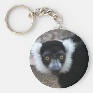 Close up of a Black and White Ruffed Lemur Basic Round Button Keychain