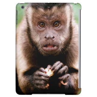 Close-up of a black-capped capuchin monkey iPad air covers