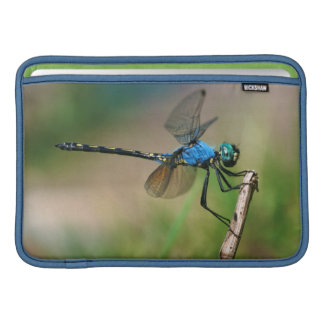 Close-Up Of A Blue Dragon Fly On A Branch MacBook Sleeve