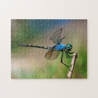 Close-Up Of A Blue Dragon Fly On A Branch Jigsaw Puzzles