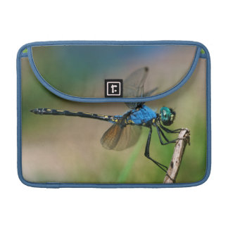 Close-Up Of A Blue Dragon Fly On A Branch Sleeve For MacBooks
