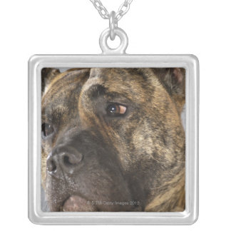 Close-up of a Boxer Square Pendant Necklace