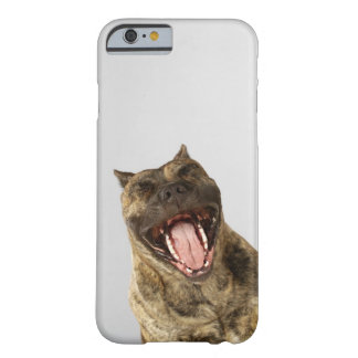 Close-up of a Boxer with its mouth open Barely There iPhone 6 Case
