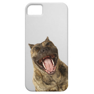 Close-up of a Boxer with its mouth open iPhone SE/5/5s Case