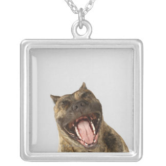 Close-up of a Boxer with its mouth open Square Pendant Necklace
