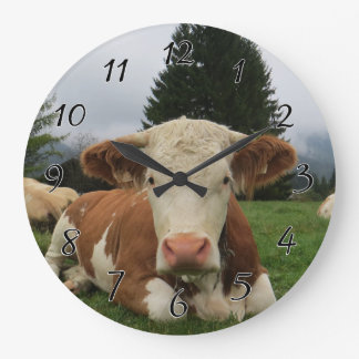 Close up of a brown and white cow laying down large clock