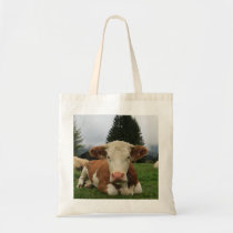 Close up of a brown and white cow laying down tote bag
