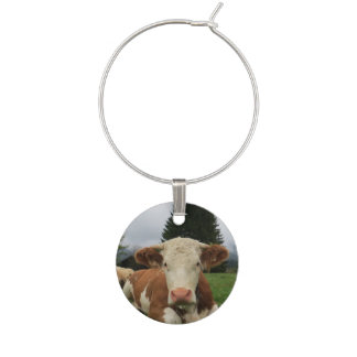 Close up of a brown and white cow laying down wine glass charm