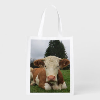 Close up of a brown and white cow laying down grocery bag