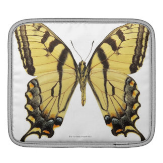 Close-up of a butterfly 2 iPad sleeve