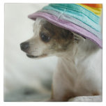 Close-up of a Chihuahua wearing a hat Ceramic Tile