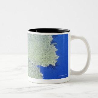 Close-up of a Common Sea Fan Two-Tone Coffee Mug