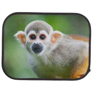 Close-up of a Common Squirrel Monkey Car Mat