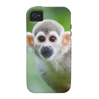 Close-up of a Common Squirrel Monkey Vibe iPhone 4 Cases