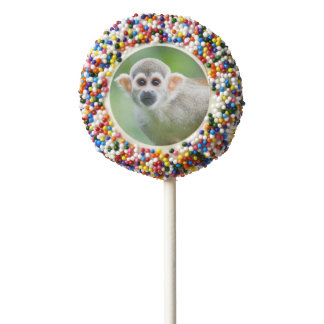 Close-up of a Common Squirrel Monkey Chocolate Covered Oreo Pop