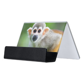 Close-up of a Common Squirrel Monkey Desk Business Card Holder