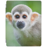 Close-up of a Common Squirrel Monkey iPad Cover