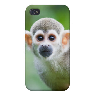 Close-up of a Common Squirrel Monkey iPhone 4/4S Covers